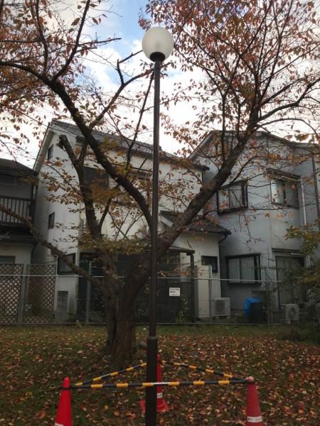 京大宇治宿舎街灯塗装完了